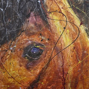 horse with no name 06